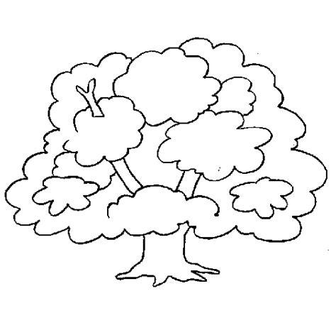 imagenes para colorear del otoño desenho de 193 rvore para colorir colorir com