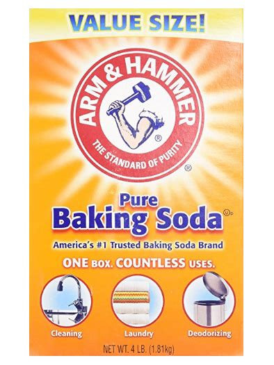 baking soda and bed bugs home remedies for bed bugs pest survival guide