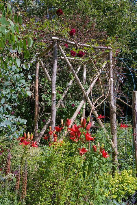 garden structures for climbing plants cottage garden trellis with roses and lilies plant