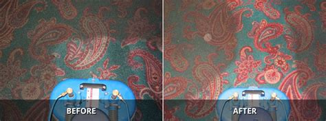 Area Rugs St Catharines Testimonials Faqs Garec S Cleaning Systems