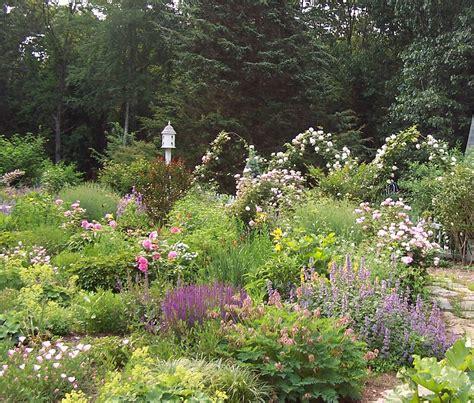 perennial garden ideas perennial garden garden ideas