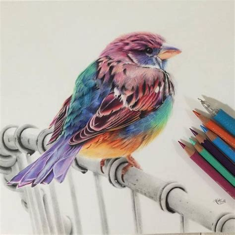 colored pencil artists 2476 best colored pencil images on