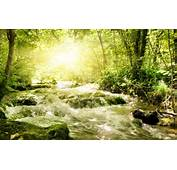 Download Waterfall Wallpaper Spring Stream