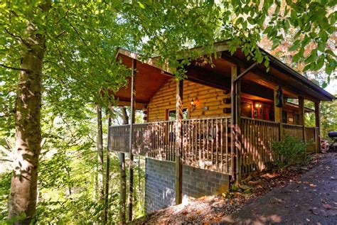Pigeon Forge Cabins Pet Friendly by Pigeon Forge Pet Friendly Cabin Deerly Beloved