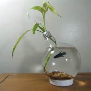 Beta Fish Plant Vase Light Bulp Fish Bowl