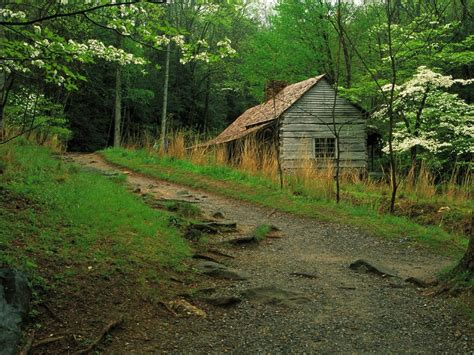 Smoky Mountain Cabins Tn by Nature Noah Bud Ogle Cabin And The Roaring Fork Motor