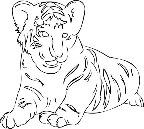 cute coloring pages of tigers cute tiger coloring pages mother day drawings kids
