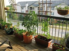 Apartment Deck Plants Oasis Balcony Gardens That Prove Green Is Always In