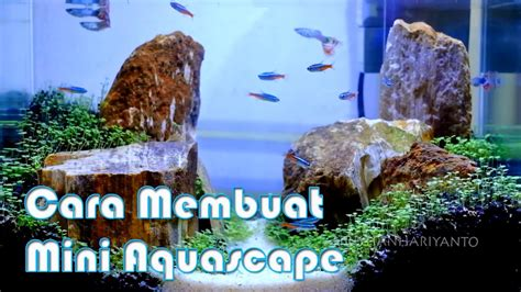 membuat aquascape mini cara membuat mini aquascape 2017 indonesia youtube