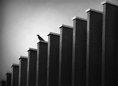 rhythm and pattern in photography rhythm photography composition and photography