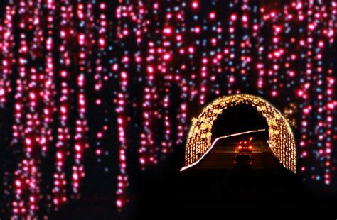 lake lanier magical lights holiday illuminations from the united states to