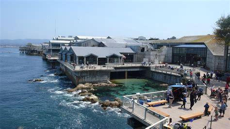 Monterey Mba by Monterey Bay Aquarium