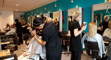 Hair Dresser Salon by Insider Recommendations For Treating Damaged Hair From Personal Hair Stylist Pros And Cons