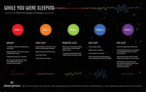 Five Stages Of Sleep Essay by While You Were Sleeping Visual Ly