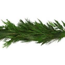 white pine cedar garland garland products