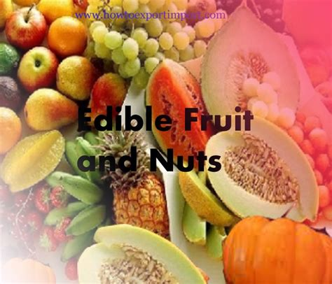 fruit 2 nuts how to export edible fruit and nuts peel of citrus fruit