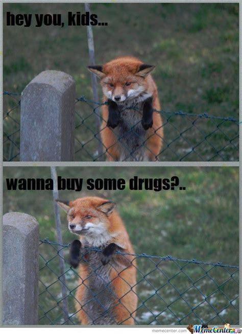 Naughty Funny Memes - naughty fox by bobmegusta meme center
