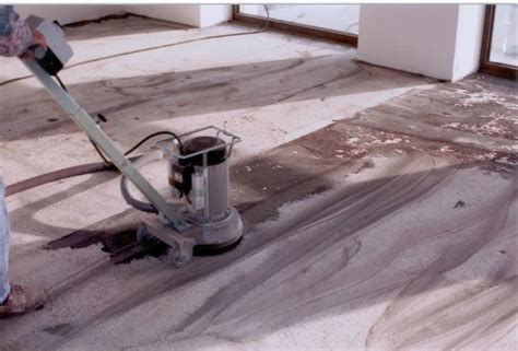 teppich entfernen teppich entfernen ger 228 t 00303420170818 blomap