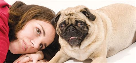 ask an expert unhealthy attachment modern dog magazine