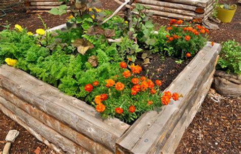 Soil For A Raised Bed Vegetable Garden Of All Garden Fertilizer Organic Is Best