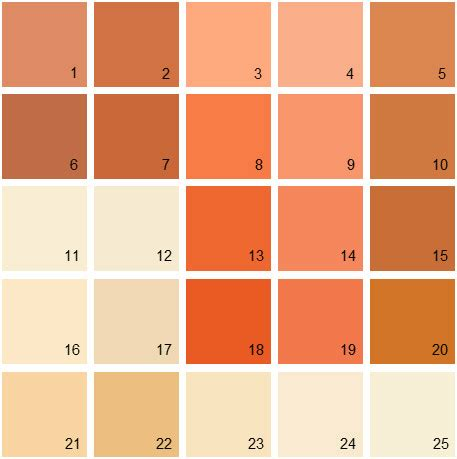 benjamin moore burnt orange delectable rustic orange paint best 25 burnt orange paint
