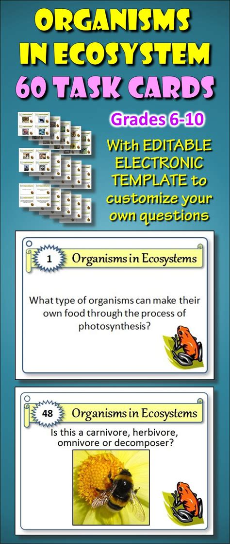 science task card template 17 best images about my task cards on