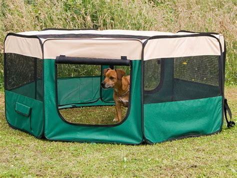 cucce recinti cancelletti per cani per ogni esigenza recinto per cani da interno recinto per cani cuccioli h 40