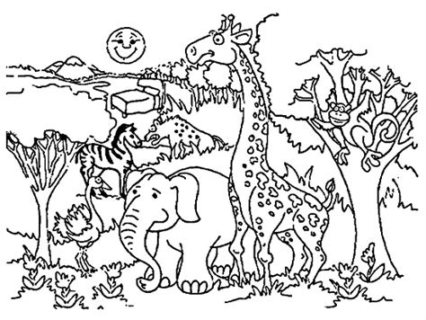 coloring book pages zoo animals printable zoo coloring pages coloring me