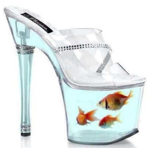 fish shoes aquarium unique aquariums fish blue and