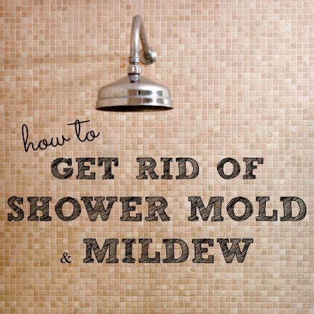 how to get rid of mold on curtains how to get rid how to get and shower mold on pinterest