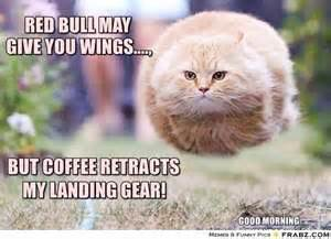 I Can See Sounds Meme - put redbull in my coffee this morning now i can see sounds