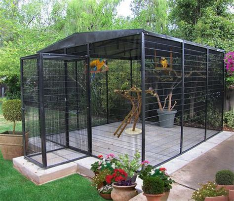 outside cages 25 best ideas about bird aviary on pet bird cage pet birds and big bird cage