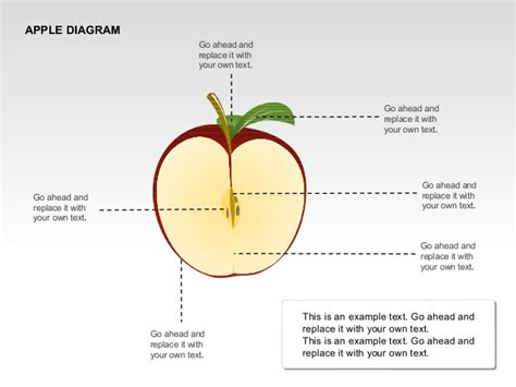 apple diagram apple diagrams collection for powerpoint