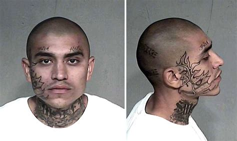 prison gang tattoos tattoo collections