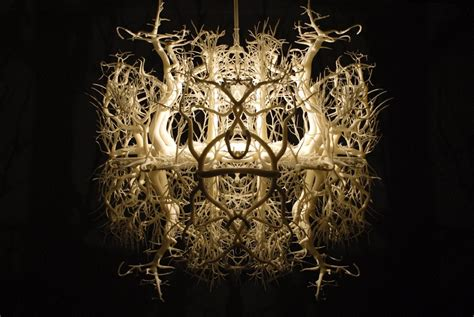 design roots instagram the light sculpture forms in nature a fascinating world