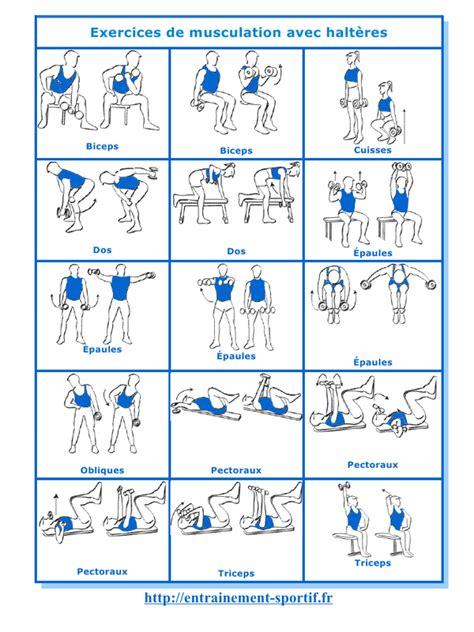 exercices de musculation avec halteres pdf par bruno