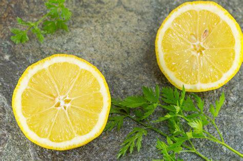 Cure Detox Citron by Cure D 233 Tox Une Boisson Citron Persil Medisite