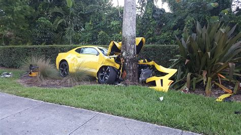 car with tree image car crashes into tree dies sun sentinel