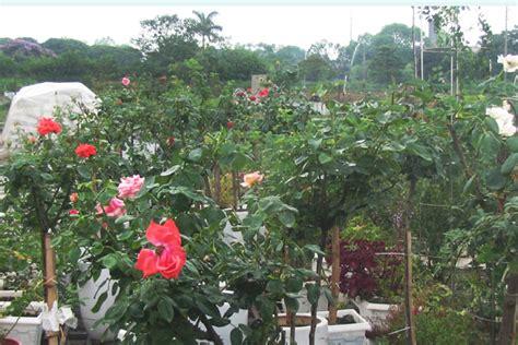 flower garden hotel hanoi flower garden hanoi flower garden hanoi hotel hanoi