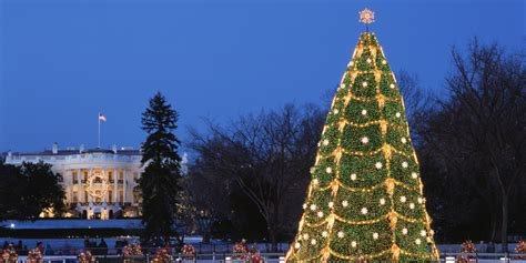america s best public christmas trees huffpost