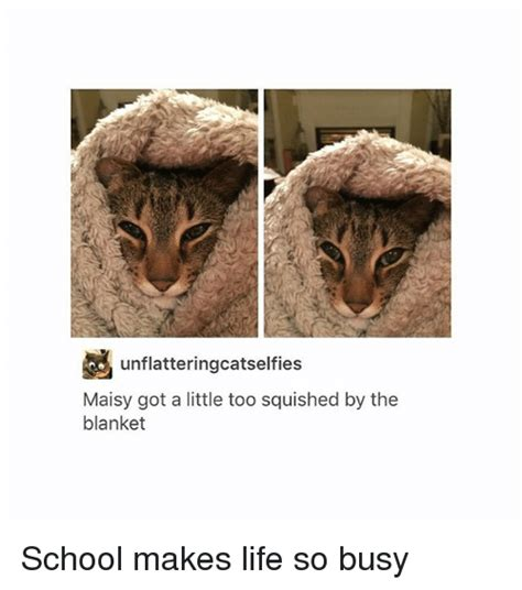 Meme Blanket - funny blanket memes of 2017 on sizzle at night