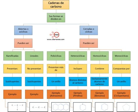tipos de cadenas qu 237 mica 2 cibertareas - Cadenas Carbonadas Mapa Conceptual