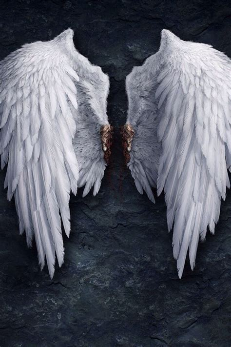 17 best images about waddesdon on pinterest wings 17 best images about angel wings on pinterest halo