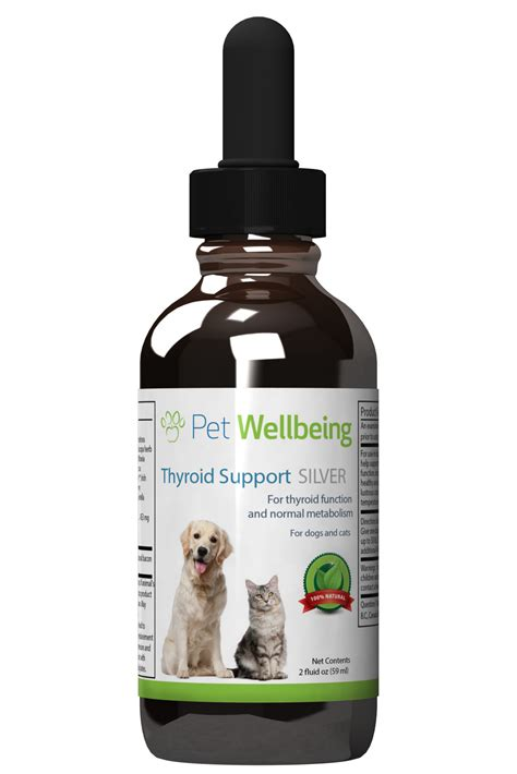 thyroid medication for dogs hypothyroidism treatment thyroid support silver for canine hypothyroidism