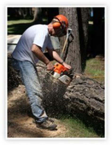 Présentation Lettre De Motivation Américaine forestier moncv