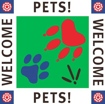 pet friendly places to stay dog cat and horse friendly pet friendly places to stay