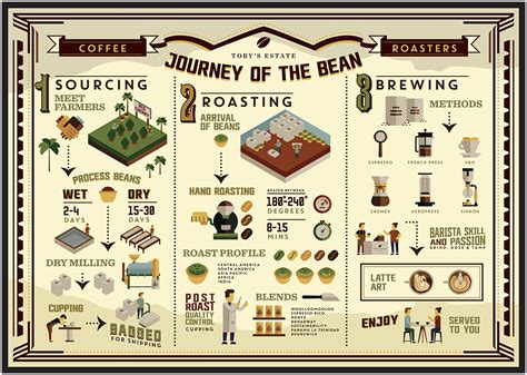 Coffee Guide: 11 Indispensable Coffee Infographics