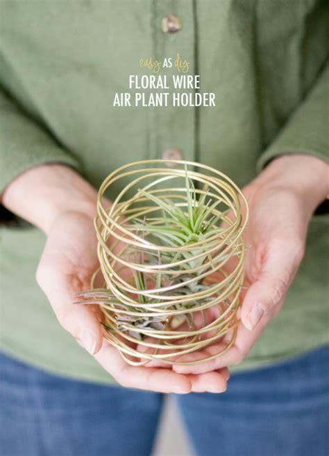diy air plant holder easy as d i y floral wire air plant holder 187 green diy