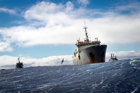 pa fish and boat fines a renegade trawler hunted for 10 000 miles by vigilantes