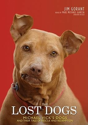 tales warming tales of rescue dogs who rescued their owners right back books the lost dogs michael vicks dogs and their tale of rescue